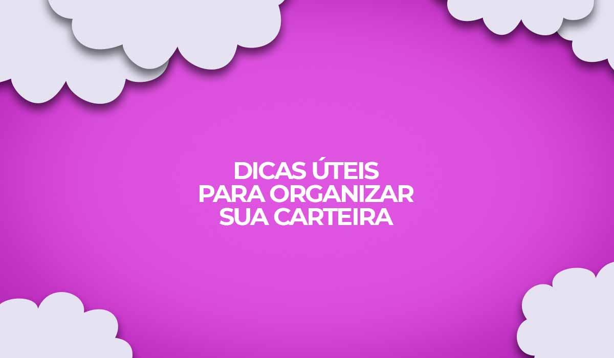 como organizar a carteira