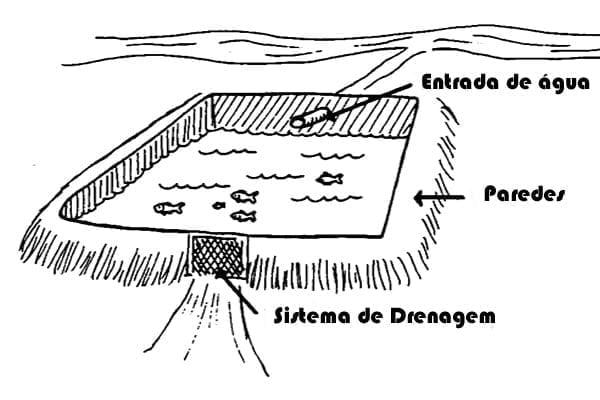 sistema drenagem viveiro peixe