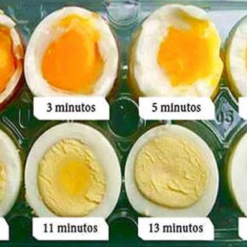 Qual o tempo exato para cozinhar um ovo?