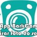 aprenda como tirar foto do seu cachorro app