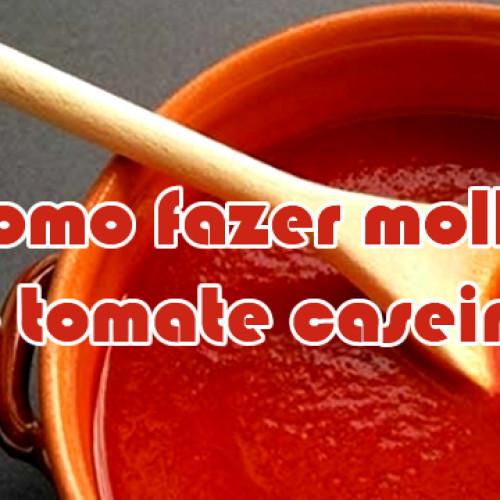 Como fazer o melhor extrato de tomate caseiro