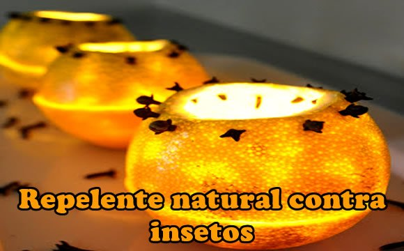 repelente natural citrico e cravos