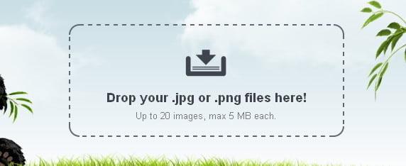 coloque seus arquivos jpg png no tiny