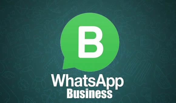whatsapp business empresas negocios