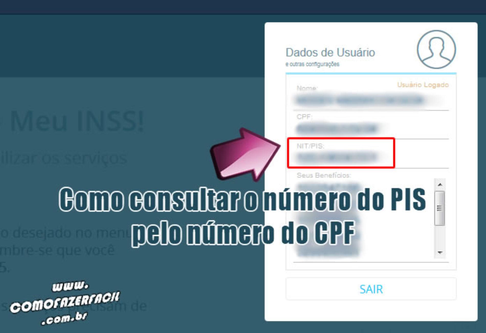 Como fazer para consultar o PIS pelo CPF online