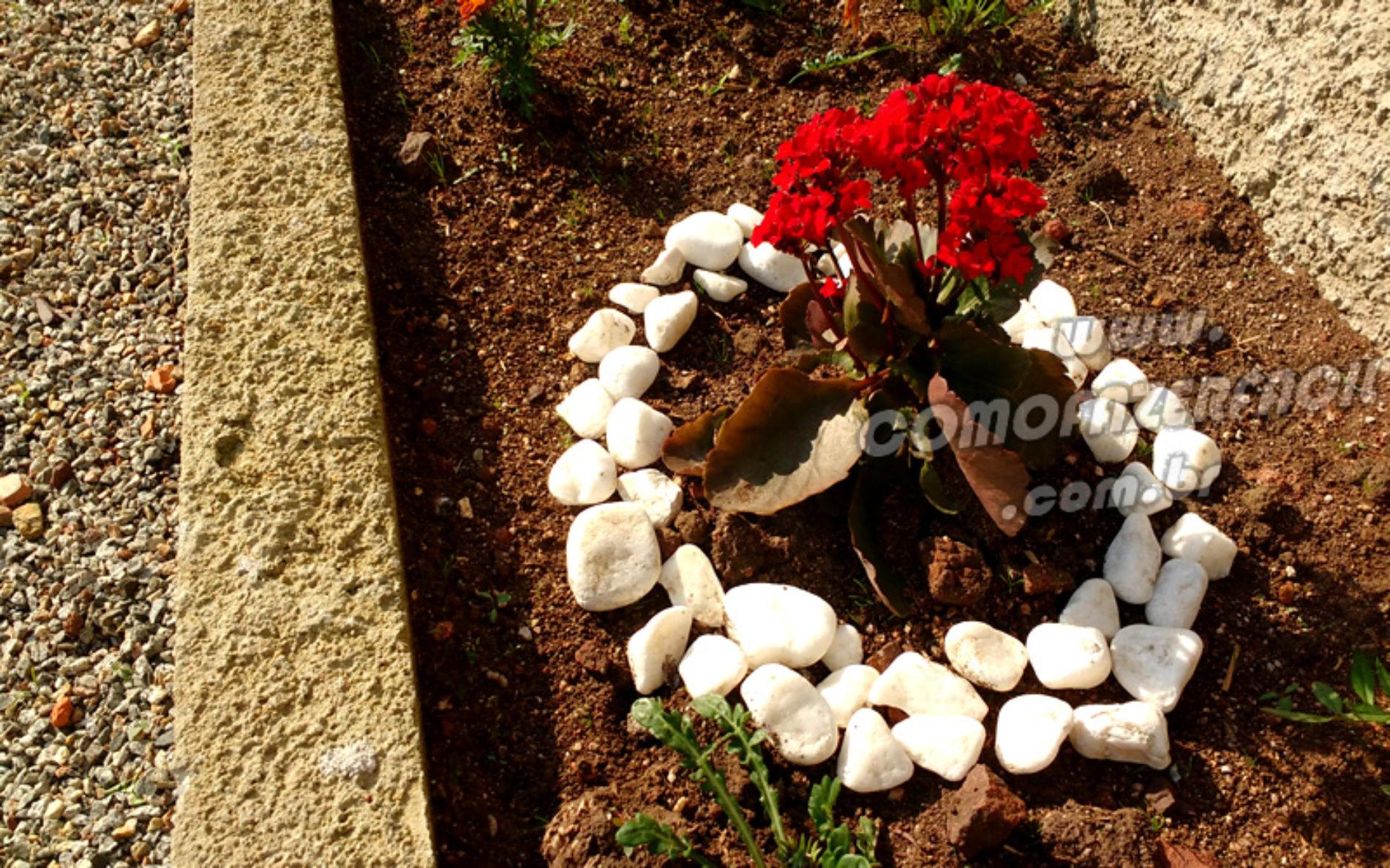 Floricultura: Como limpar seixos/pedras brancas facilmente