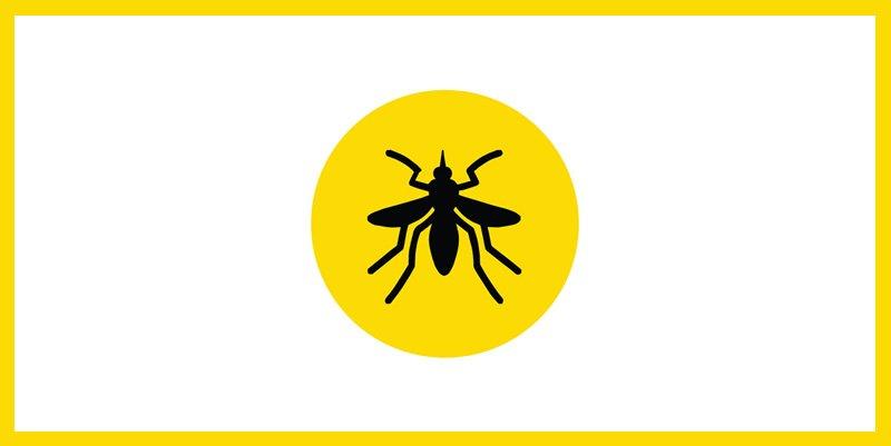 vacina contra febre amarela viagens internacionais certificado