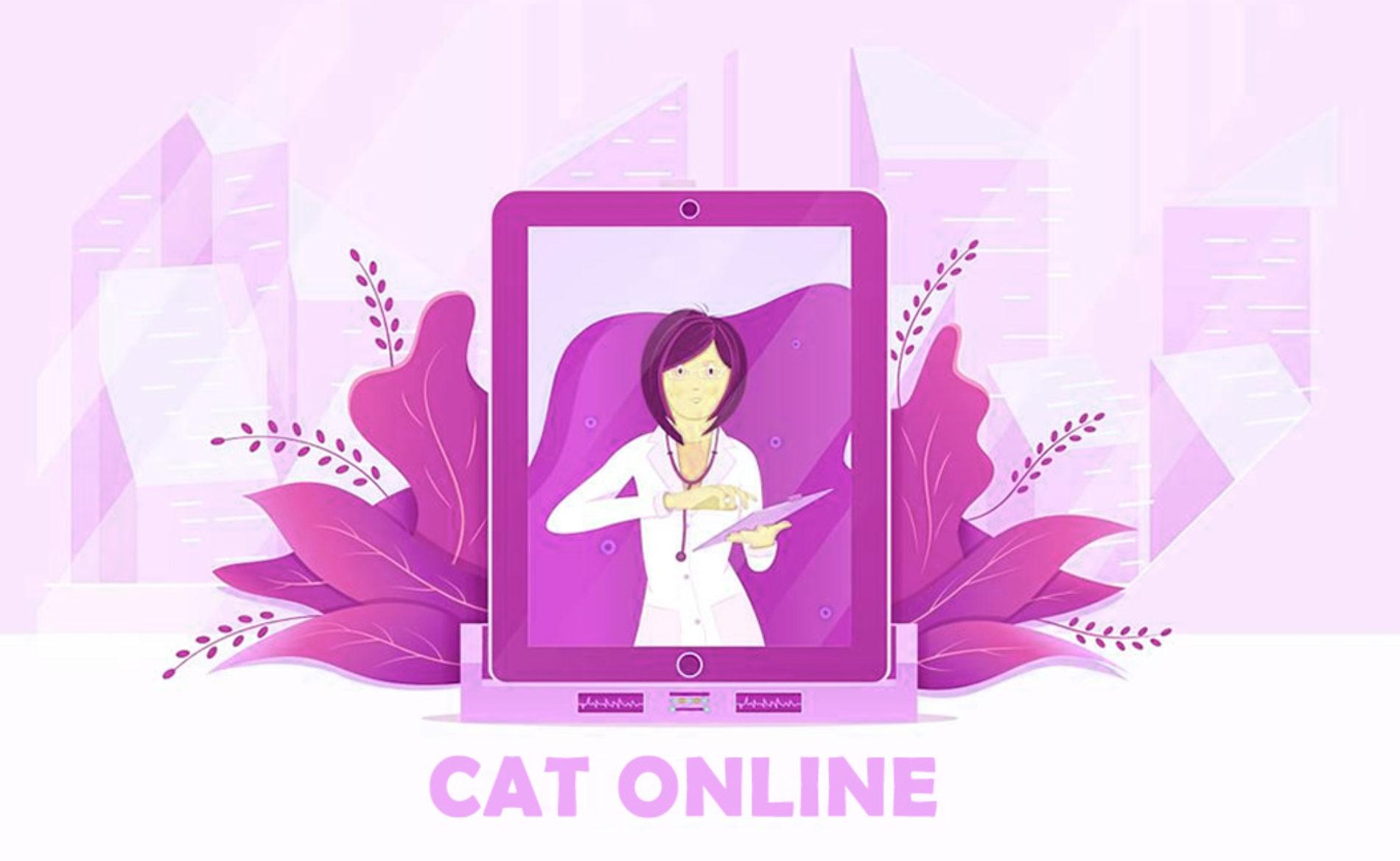 Como fazer a CAT Comunicação de Acidente de Trabalho Online