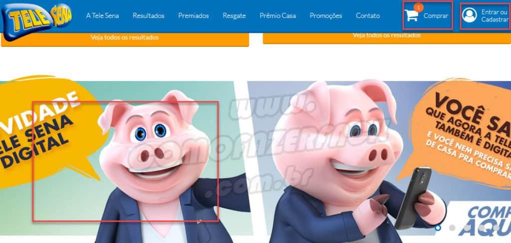 Acessando o site da Tele Sena para comprar a versão online.
