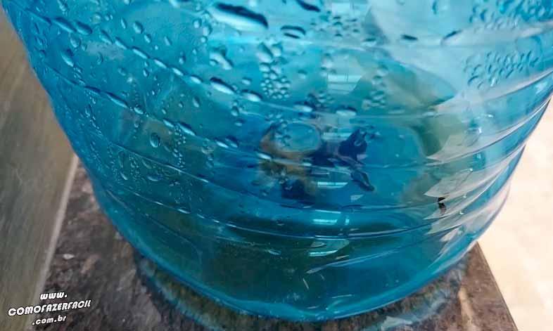 liquido da composteira para colocar em hortas e flores